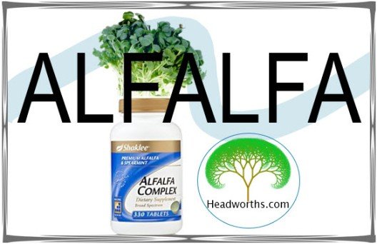 alfalfa header