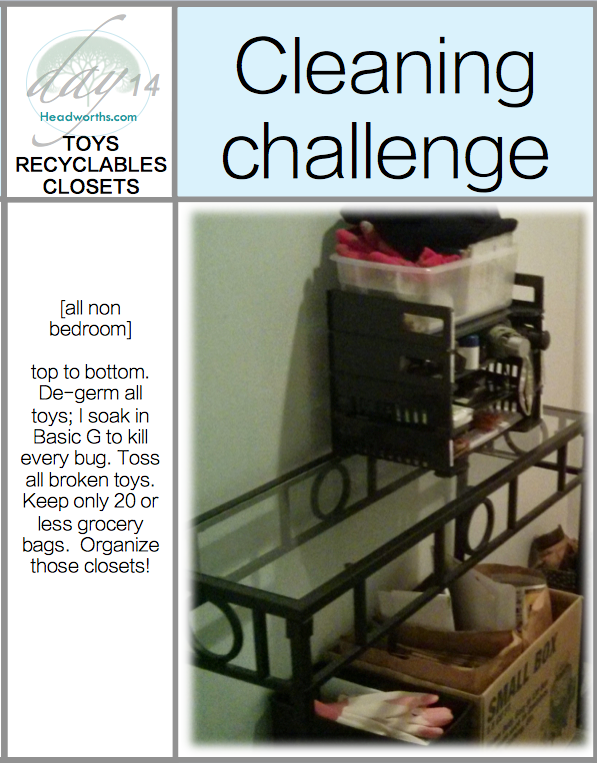 GET CLEAN CHALLENGE day 14