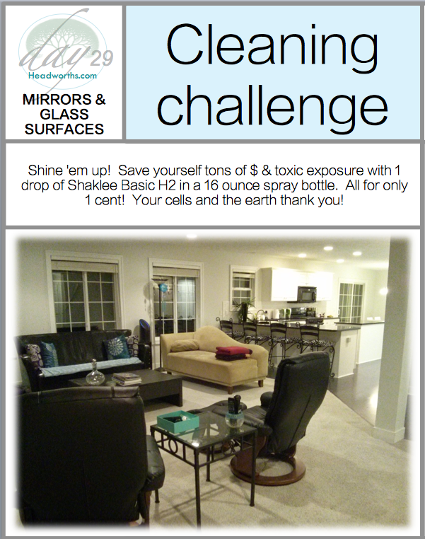 GET CLEAN CHALLENGE day 29