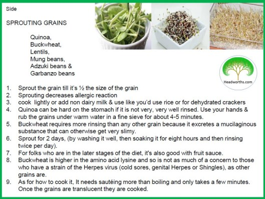 HOW TO SPROUT GRAINS