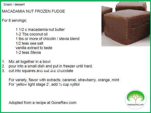 MACADAMIA_NUT_FROZEN_FUDGE (1)
