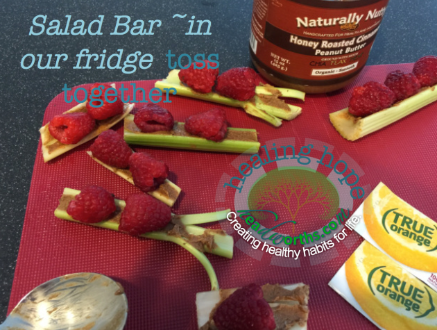 salad bar in our fridge celery pb raspberries