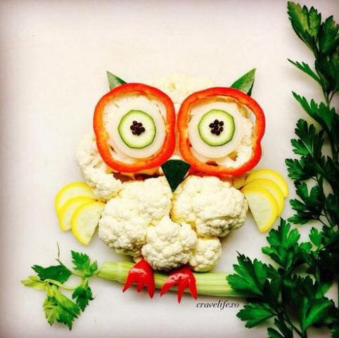 veggie_owl