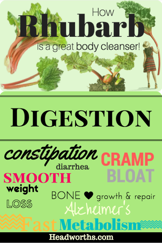 how rhubarb is a great body cleanser